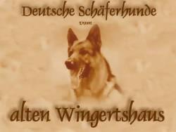 An den Beitrag angehängtes Bild: http://www.wingertshaus.de/ba/banner-start.jpg
